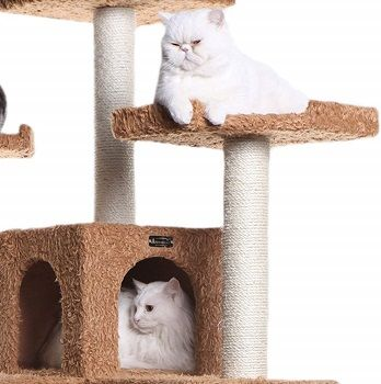ARMARKAT Classic Cat Tree A7407 Ochre Brown review