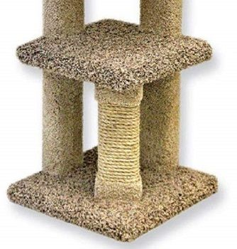 Beatrise Kitty Nest Cat Condo review
