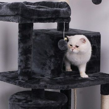 Bewishome Cat Tree Condo Furniture Kitten Activity Tower MMJ01 reeview