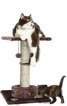 Furhaven Pet Cat Tree -Tiger Tough Cat Tree Scratching Post Playground review