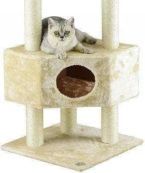 Go Pet Club 51-inch Cat Tree Condo House Furniture review
