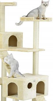 Go Pet Club 72-Inch Cat Tree review