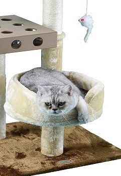 Go Pet Club IQ Busy Box Cat Tree review
