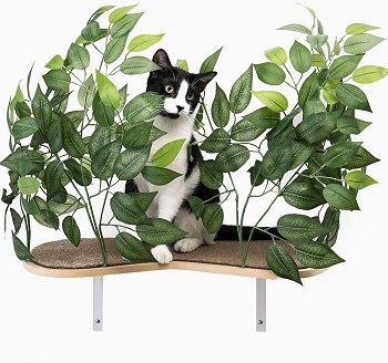 On2Pets Cat Canopy Shelves review
