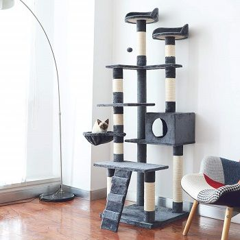 6-ft-72-inch-cat-tower-tree