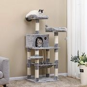 Best 5 Corner Cat Tower & Tree You Can Choose In 2020 Reviews
