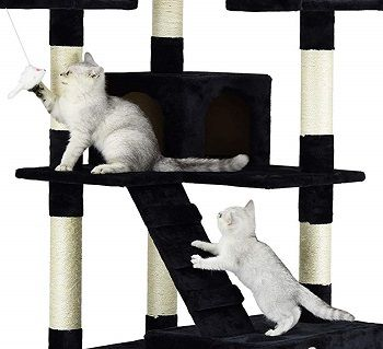 Go Pet Club 72'' Cat Tree review