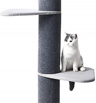 Max & Marlow Cat Tree review