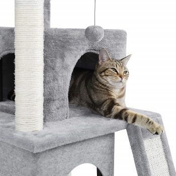 Pawz Luxury Cat Tower review