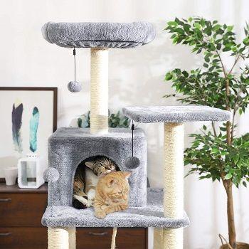 castle-cat-tower-tree