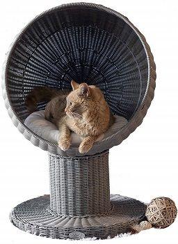 The Refined Feline Kitty Ball