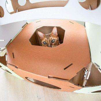 Catty Stacks Modular Cat Cubes review