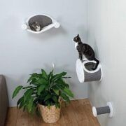 Top 5 Wall Mounted Cat Tree Furniture To Buy In 2021 Reviews