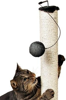 Trixie Cat Scratching Post review