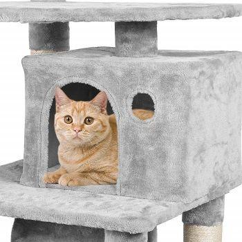 Yacheetech Cat Tree review