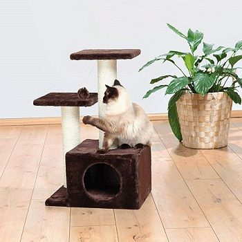 small-cat-tree-tower